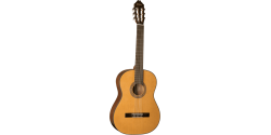 WASHBURN C40 Fasila Music