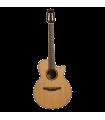 Guitare classique TAKAMINE P3FCN
